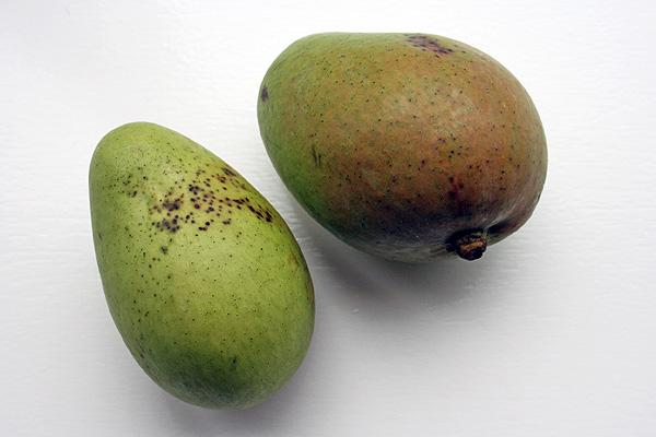 groene mango